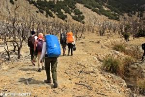 Perjalanan ke Pondok Saladah lewat Hutan Mati