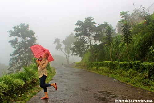 Untung ada payung kesayangan