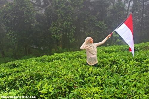 Hanya salah satu usaha seorang ibu yang ingin anaknya turut mencintai alam dan tanah tempatnya akan dilahirkan :)